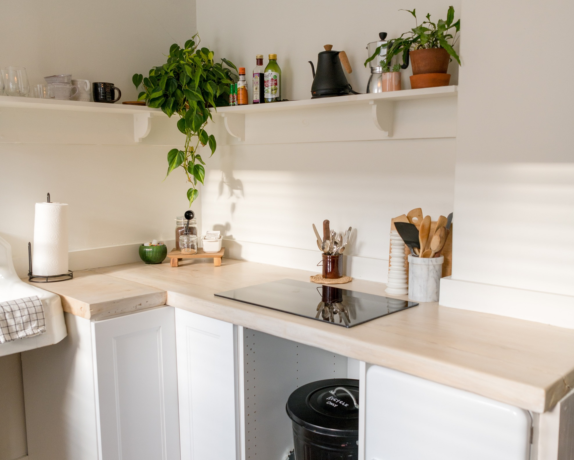 kitchen corner with plants and pots